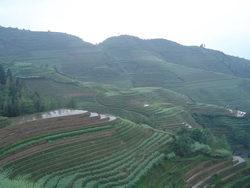 Longsheng Terraces Private Tour